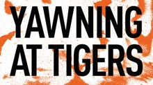 Yawning at Tigers: An Interview with Drew Dyck