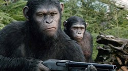 'Dawn of the Planet of the Apes'