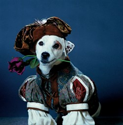 Wishbone as, apparently, a courtier from a French novel.