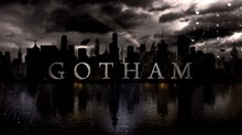 "The Critics Roundup: ""Gotham"" and ""The Skeleton Twins"""