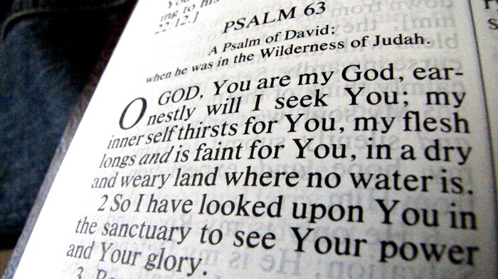 Want Better Politics? Read More Bible, Say Half of Americans
