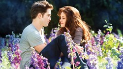 'Twilight: Breaking Dawn'
