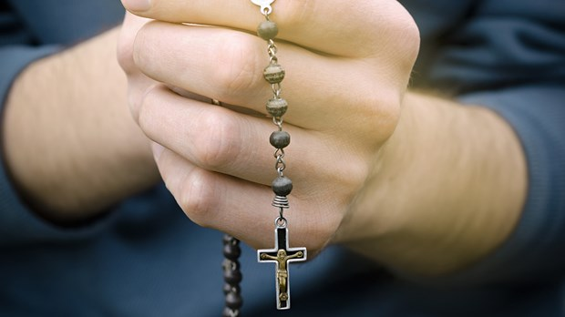 Venerate Mary?