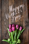 Top 10 Bible Studies for Mother's Day