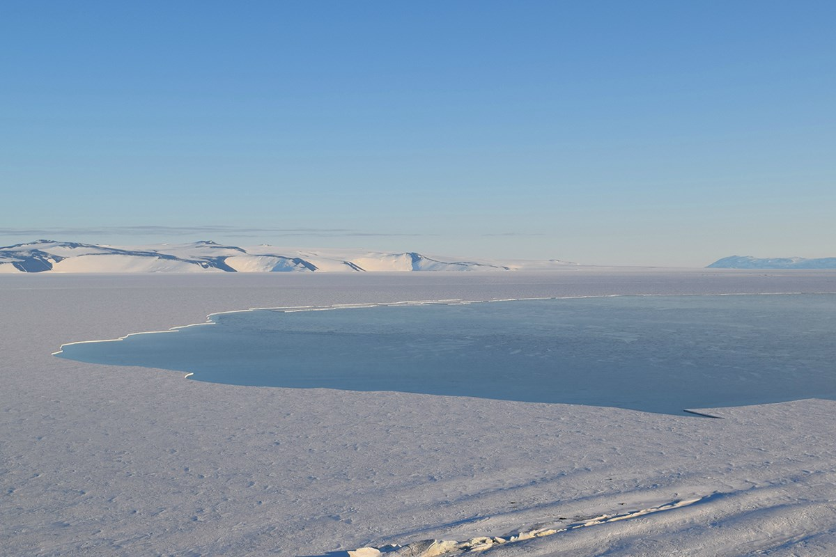 The open Ross Sea meets the edge of the sea ice and, in the distance, the Ross Ice Shelf with White Island on the left and Black Island on the right. This photo was taken near 4 a.m. in February, when orcas and minke whales are commonly seen hunting and feeding in these waters.