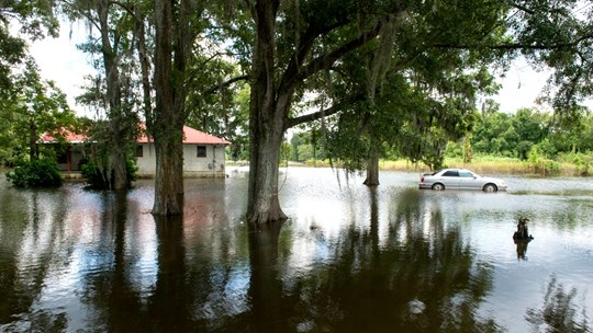 A Lament for Louisiana After the Floods
