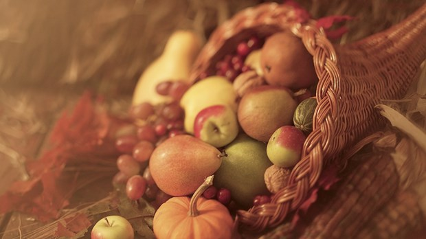 A Cornucopia of Thanksgiving Ideas