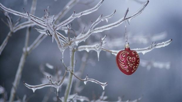 Merry ... Advent?