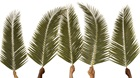 Top 5 Palm Sunday Sermons