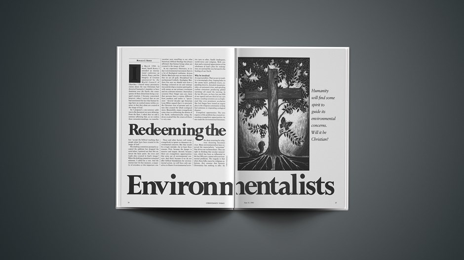 Redeeming the Environmentalists