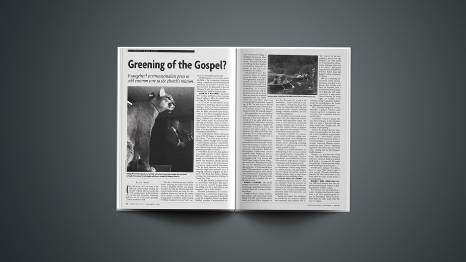 Greening of the Gospel?