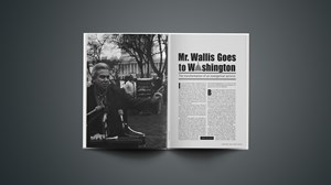 Mr. Wallis Goes to Washington