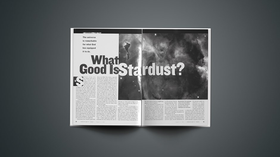What Good is Stardust?