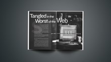 Tangled in the Worst of the Web