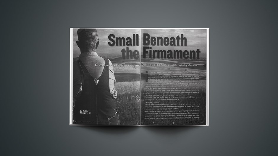 Small Beneath the Firmament