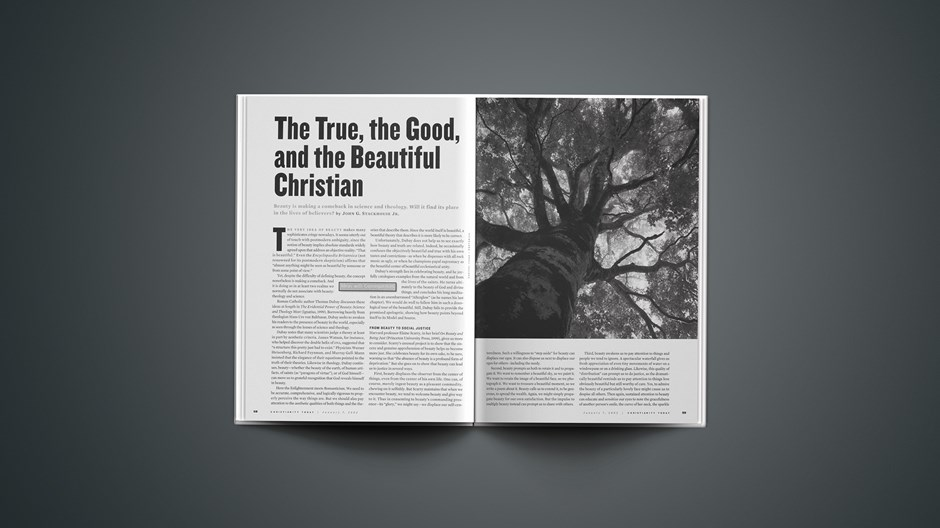 """The True, the Good, and the Beautiful Christian"""