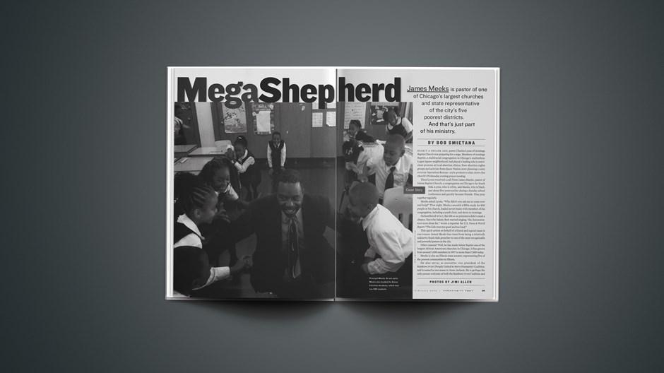 MegaShepherd
