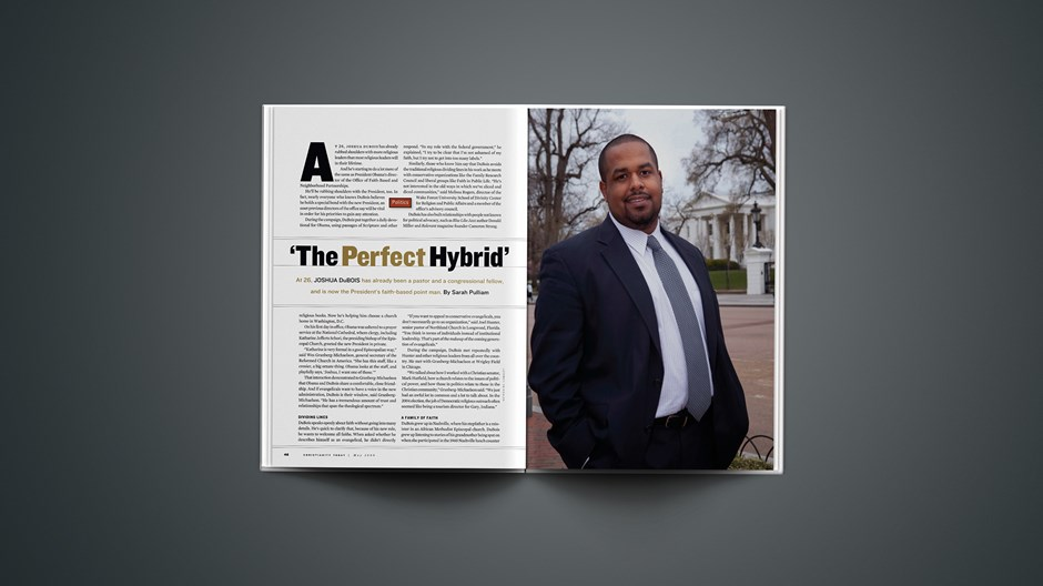 'The Perfect Hybrid'