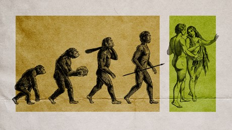 What If We Don't Have to Choose Between Evolution and Adam and Eve?