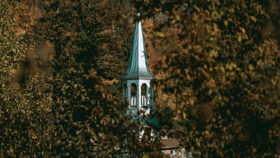 How the Forest Inspired Me to Stay in Church