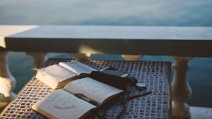 Let Bible Reading Get Back to Basics