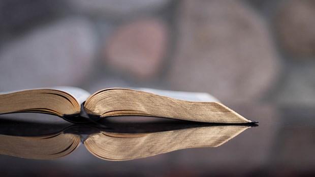 Top 10 Digital Bible Studies for 2020