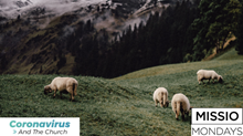 6 Ways to Shepherd When You Can't See the Sheep