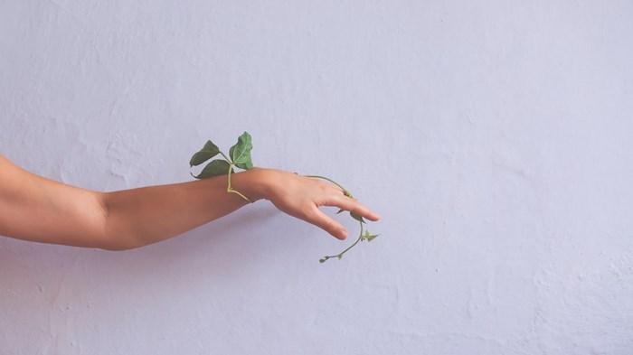 At the End, A Garden