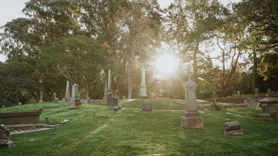 Good News: Tomorrow We Die