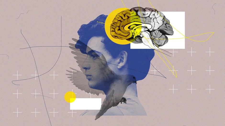 """Doenças mentais e a armadilha da """"teodiceia médica"""""""
