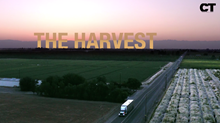 CT Media Presents: The Harvest