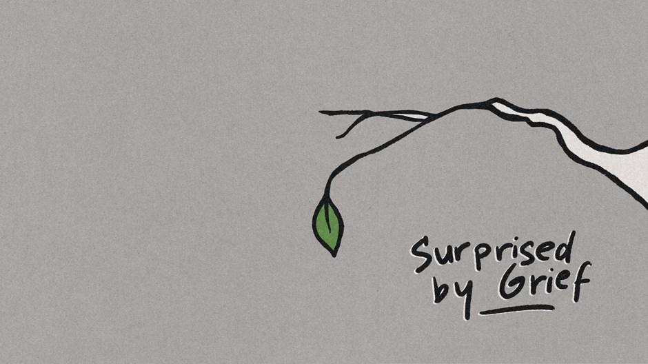 Surprised by Grief: Sneak Peek
