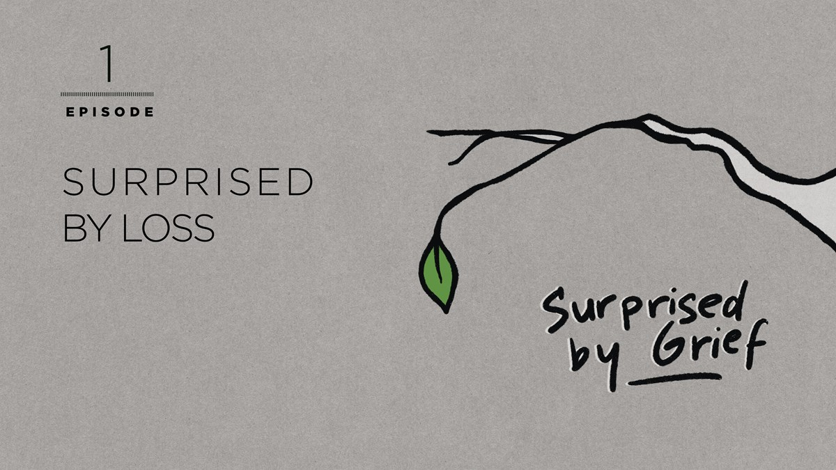 Introducing: Surprised by Grief