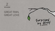 Great Pain, Great Love
