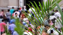 Пальмовые ветви, Храм и народы