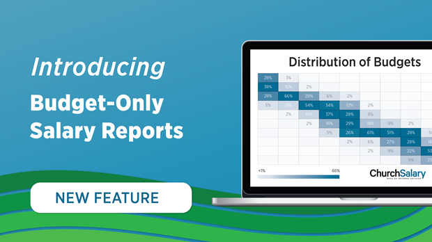 Introducing Budget-Only Reports