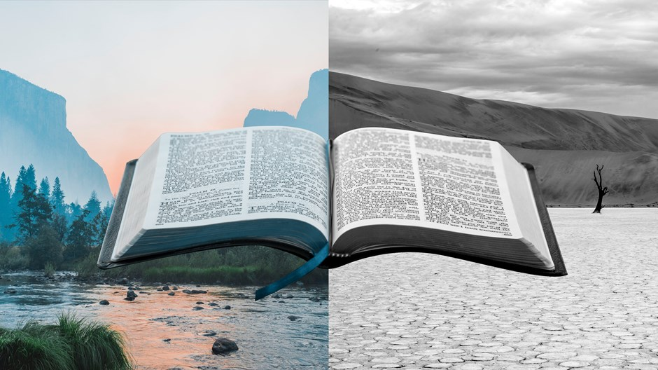 """为什么我不再用""""枯燥无味""""来形容《圣经》的某些内容?"""