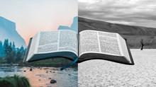 """為什麼我不再用""""枯燥無味""""來形容《聖經》的某些內容?"""