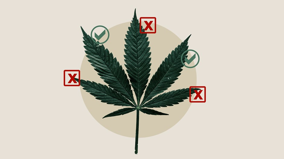 Getting High Is (Increasingly) Lawful. Is It Ever Beneficial?