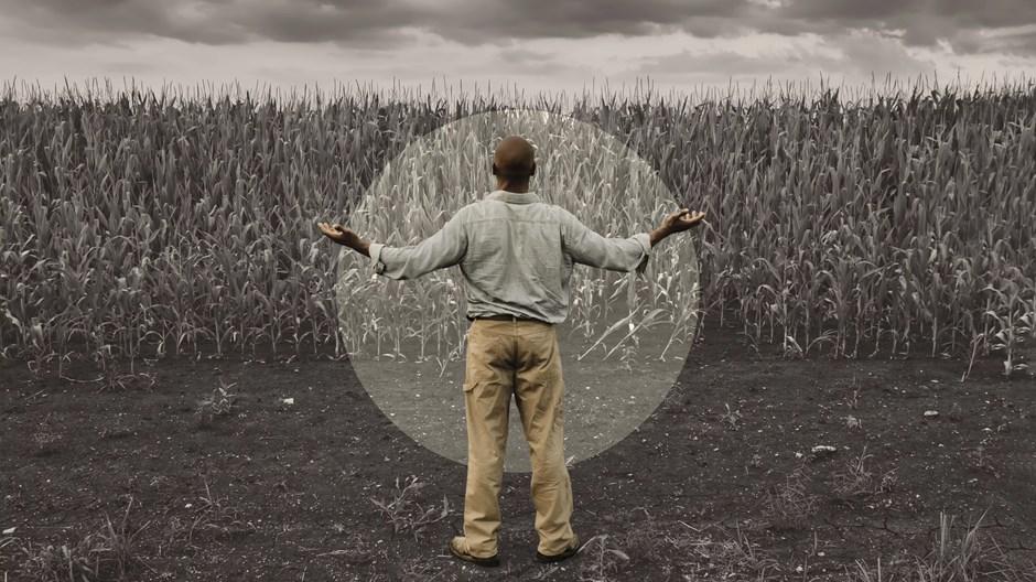 Por que a destruição ambiental prejudica a adoração