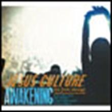 Awakening: Live in Chicago