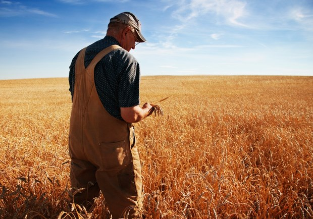 Did We Love 'God Made a Farmer' Too Much?