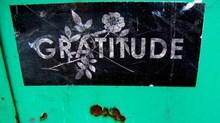 Gratitude Comes to the City