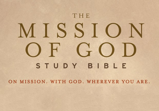 The Impact of Sin on the Mission of God