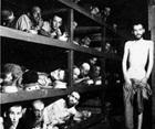 Holocaust Prisoners