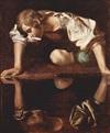 <em>Narcissus</em>
