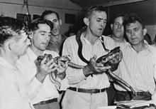 Snake Handling History in Six Bites