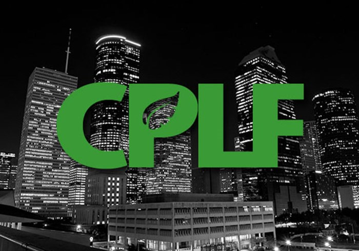 Church Planting in the City and in a Multi-Ethnic Context: The Next CPLF Gathering