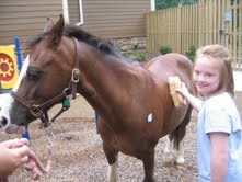 Gillian brushes Silky, a therapy horse at Jill's House