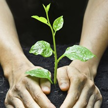 Healthy Ministries Have Healthy and Growing Leaders